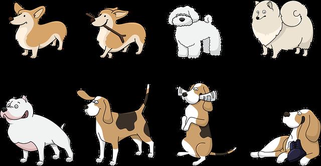 osm psů