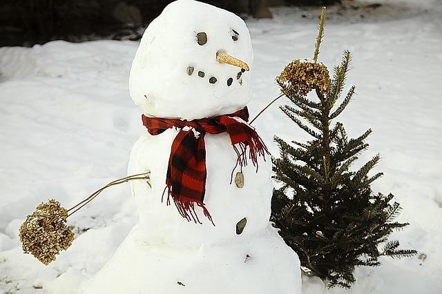 sněhulák se stromkem